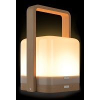 high_power_lucis__2_1_bamboo_portable_lamp_with_powerbank
