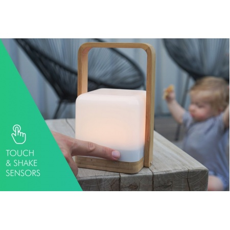 high_power_lucis__2_1_bamboo_portable_lamp_with_powerbank2